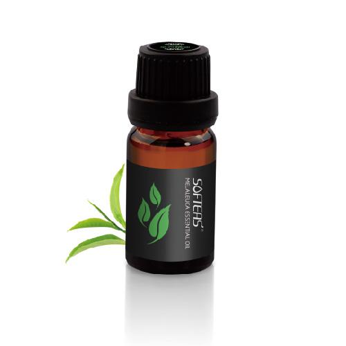 茶树单方精油