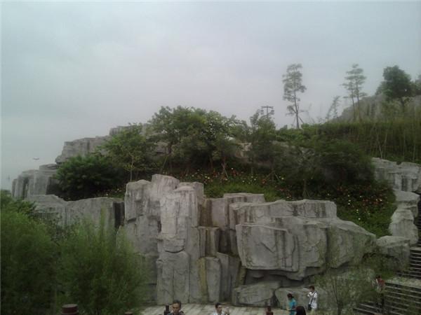 广西绿化工程