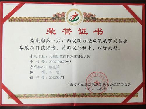 第一届广西发明创造成果奖金奖