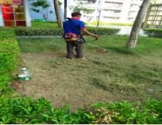 阳光壹佰上东国际保洁及绿化养护服务