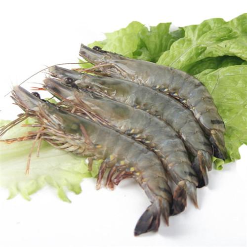 草 虾.jpg