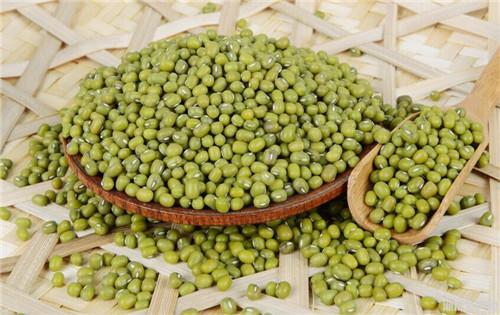 绿 豆.jpg