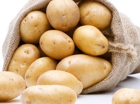 土 豆.jpeg