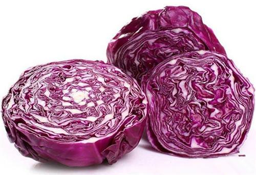 紫甘蓝.jpg