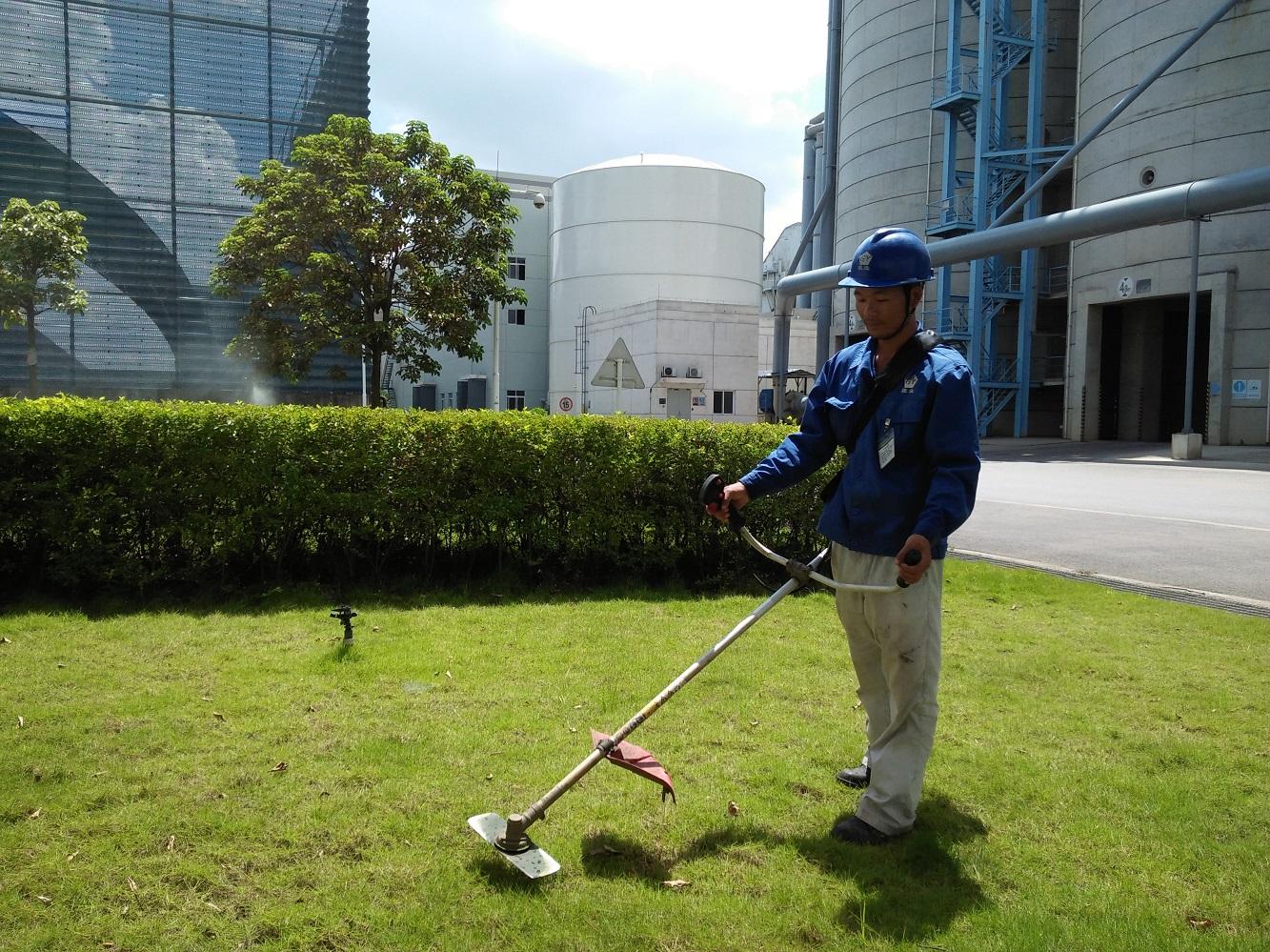 园林绿化养护