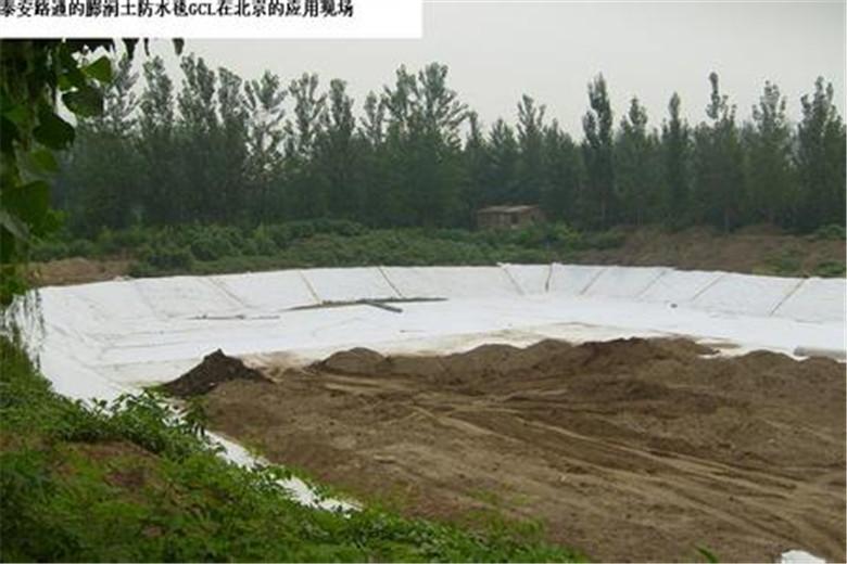 广西GCL膨润土防水毯