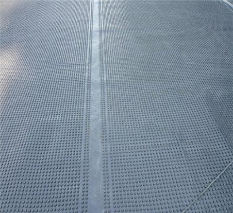 南宁排水板