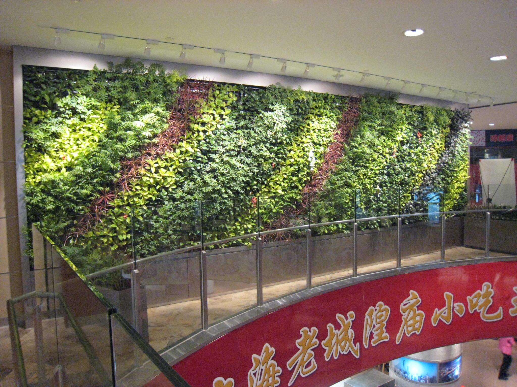 室内 餐厅植物墙