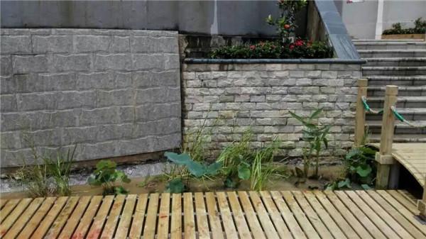 南宁校园景观设计