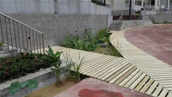 南宁学校景观施工