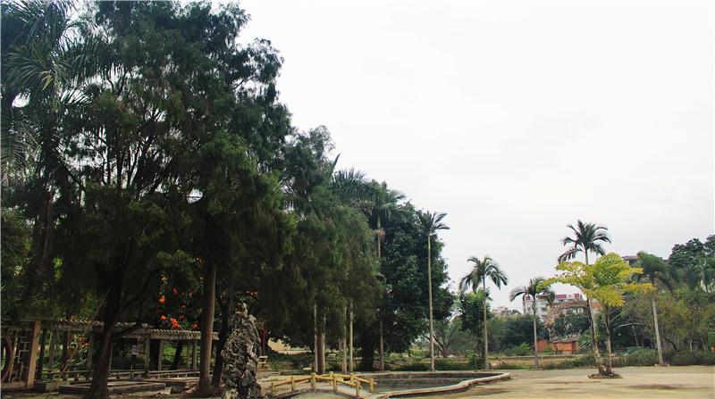 玉林校园一角
