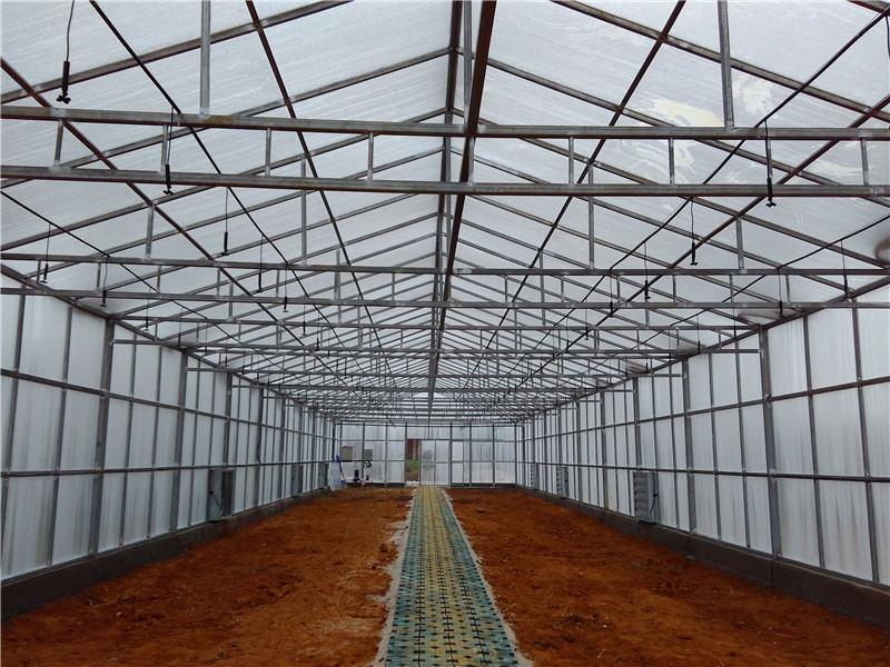 阳光板大棚内部结构