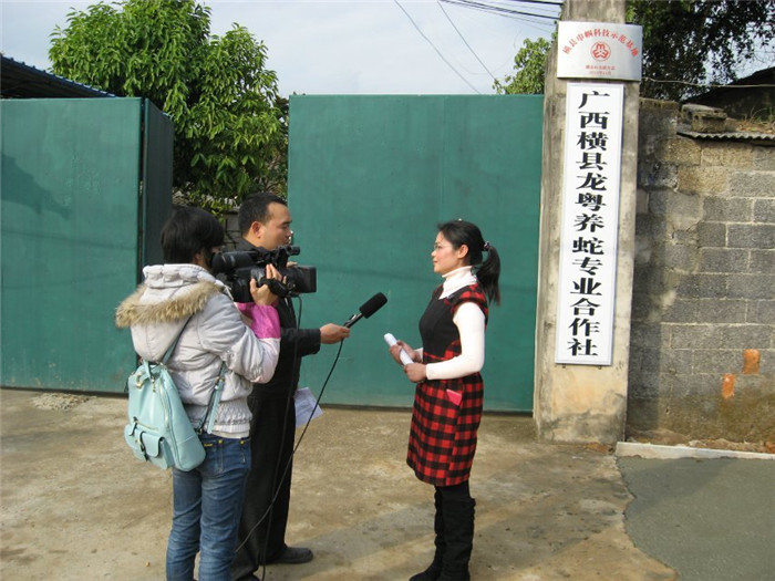 广西横县电视台到我场采访