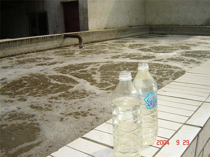 造纸工业废水危害