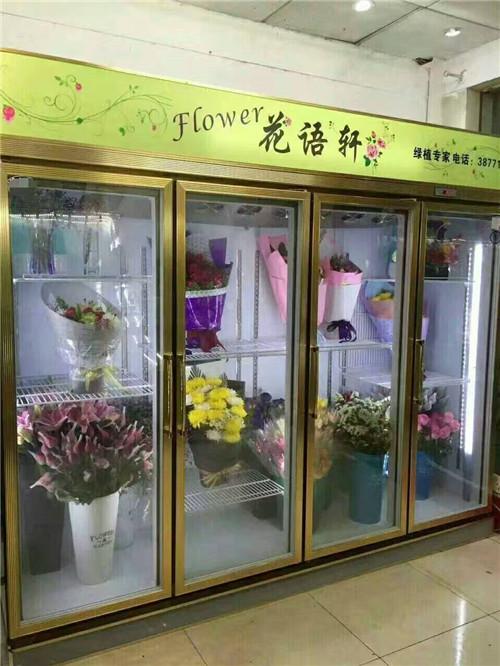 定制款风冷鲜花柜