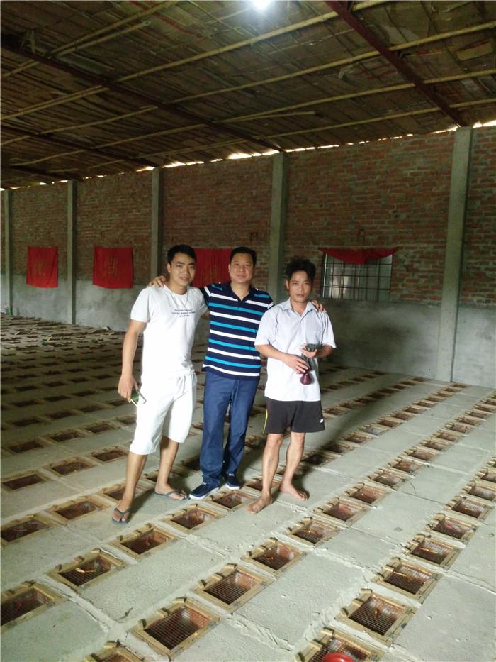 越南眼镜蛇房