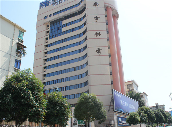 柳州電網公司