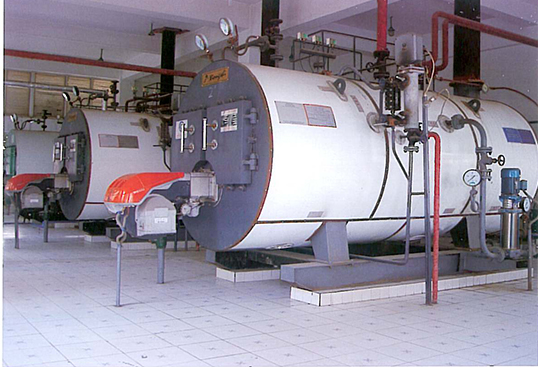 WNS系列卧式生物质气化燃烧承压热水锅炉