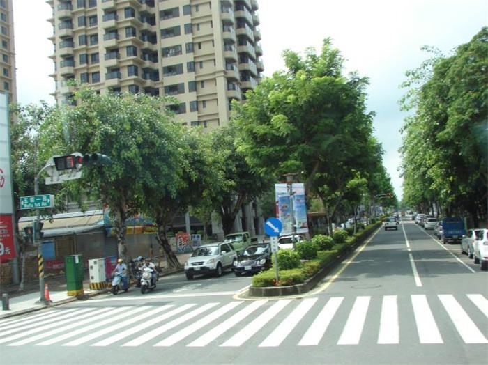 南宁道路绿化设计