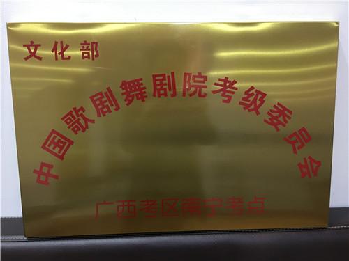 中国歌剧院考级委员会照片