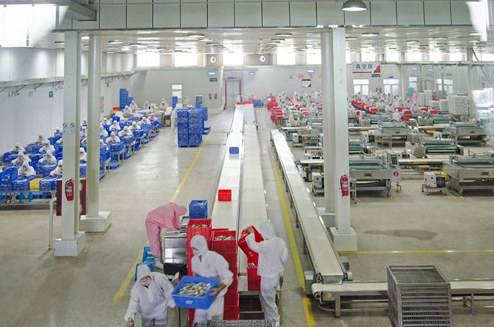 北海牛肉加工包装程序