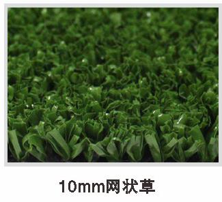 10mm网状草.png
