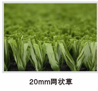 20mm网状草.png