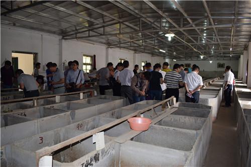 广西河池组织考察5.JPG