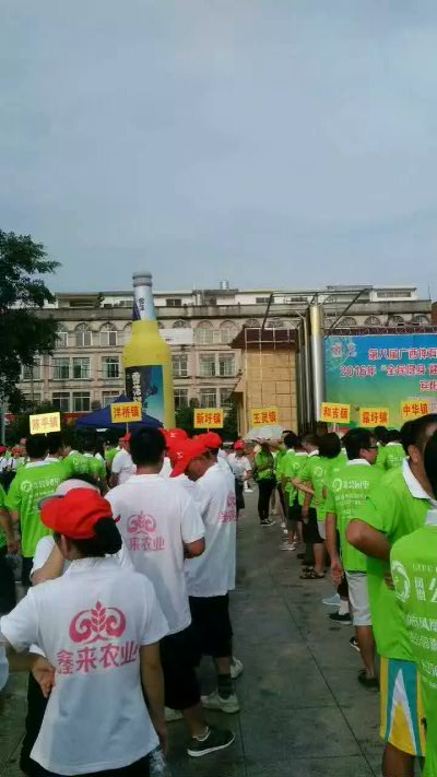 公司助力政府参加广西体育节宾阳分会场体育活动