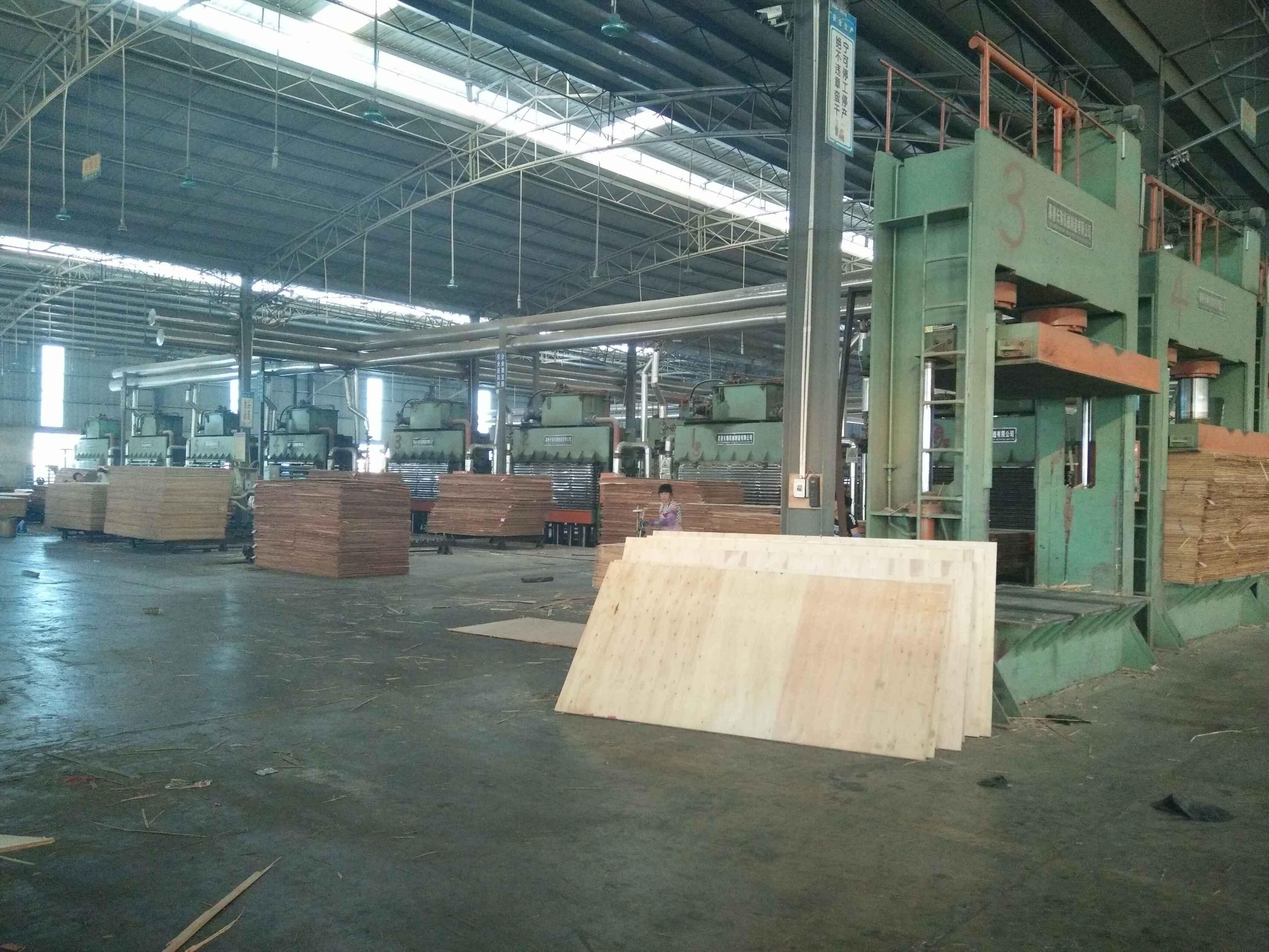 柳州多层实木板机器