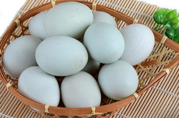 辽宁海鸭蛋