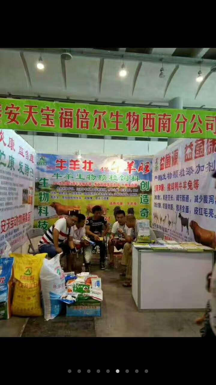 云南博览会