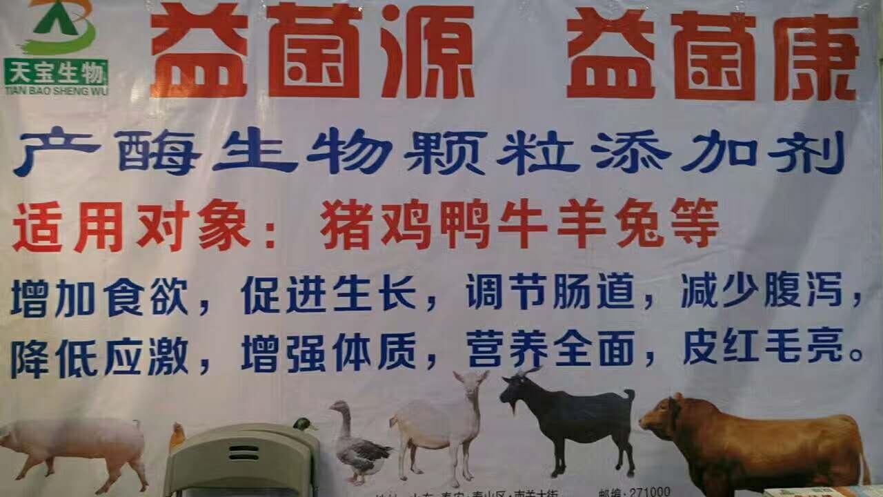 云南博览宣传