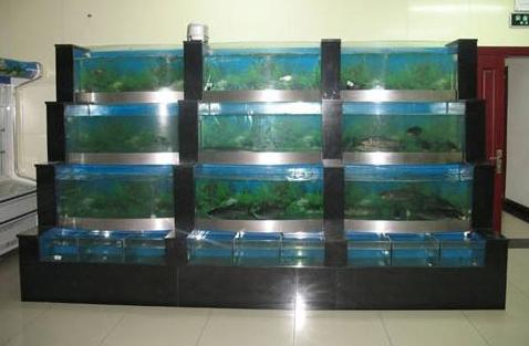 殖温度箱鱼池冷水机