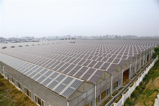 光伏太阳能温室棚