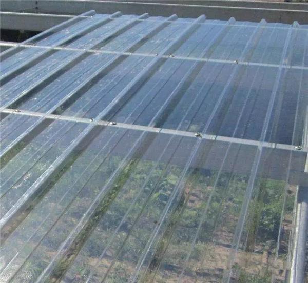 FRP采光瓦運用于蔬果瓜棚建造效果.png