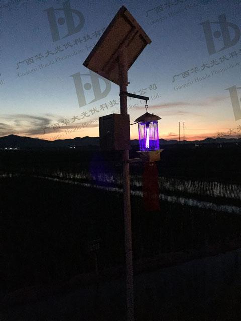 南寧市橫縣農業局示范區蟲害綠色防控太陽能殺蟲燈