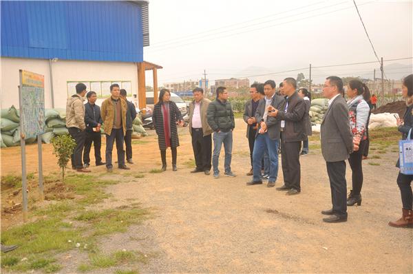 20170223国家农业部莅临安安指导工作