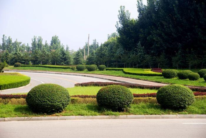 南宁绿地花园养护