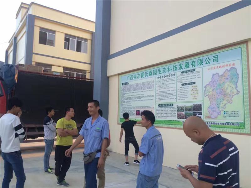 天等县创业园天花机工程项目