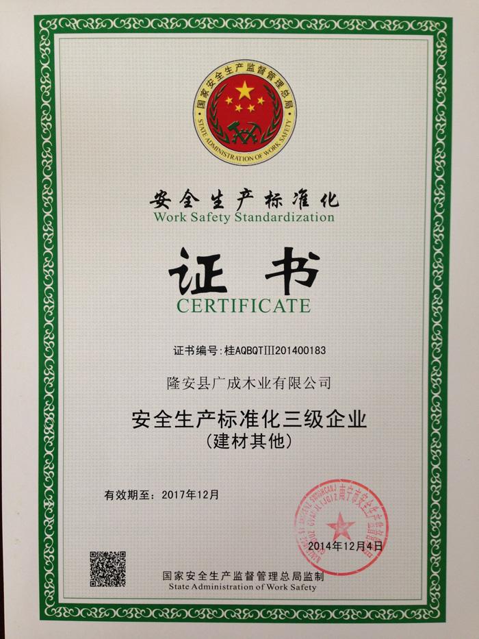 安全标准化证书