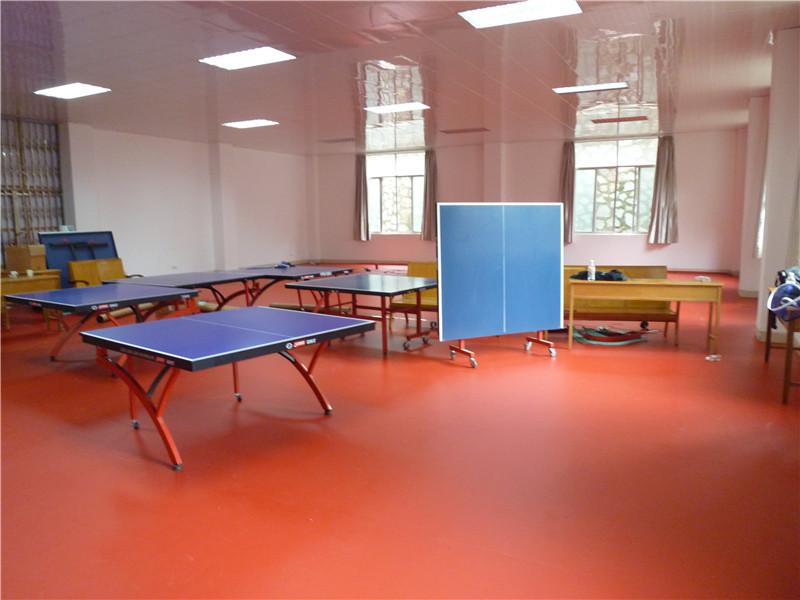 PVC运动地胶乒乓球场