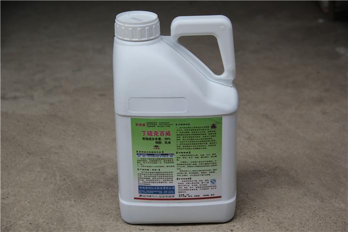 龙州如何选择杀虫剂是最有效的?