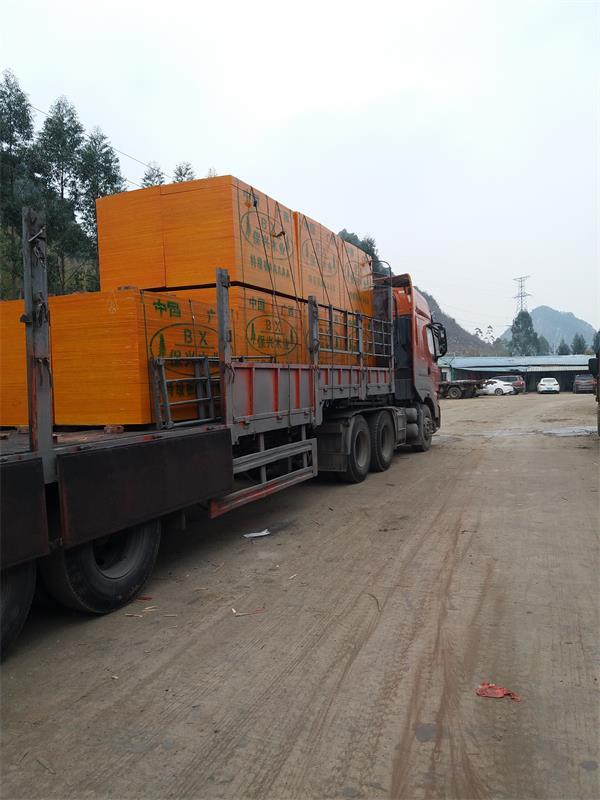 广西桉木建筑模板
