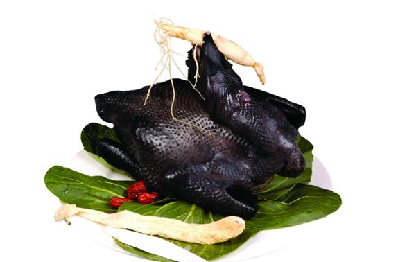 竹丝鸡供应商