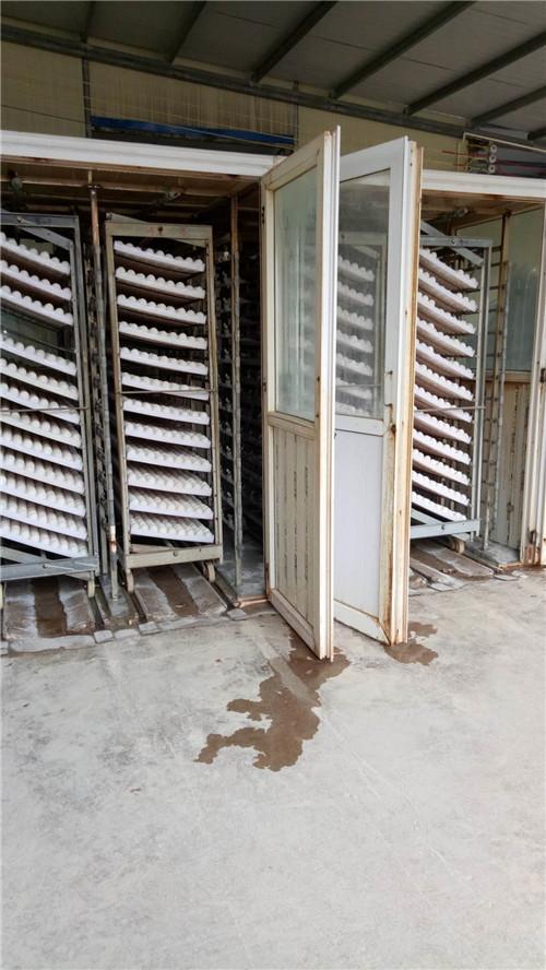 武汉孵化箱