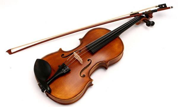 百色小提琴