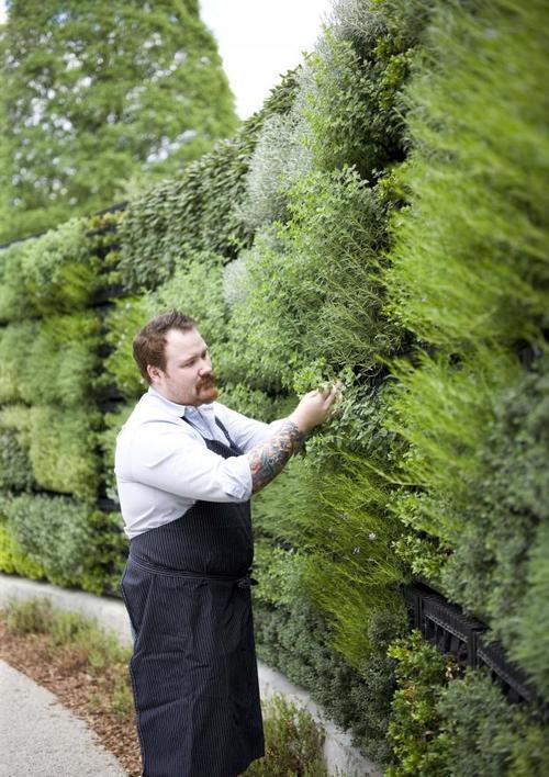 广西植物墙设计