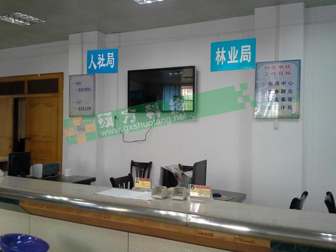 柳州都安县政务服务查询机项目