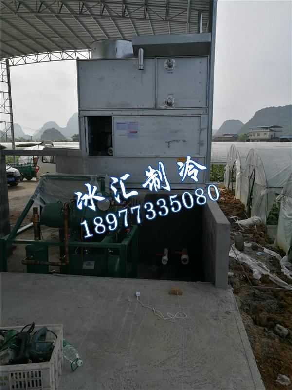 农业补贴冷库工程.jpg